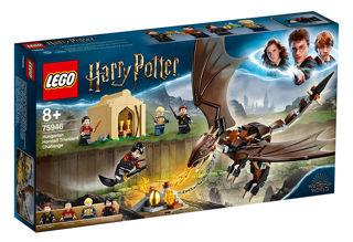 Immagine di La Sfida Dell'ungaro Spinato Al Torneo Tremaghi - Lego Harry Potter (75946)