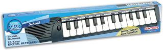 Immagine di Concertino-tastiera 25 Tasti, Colore Noir/blanc, 15 2500